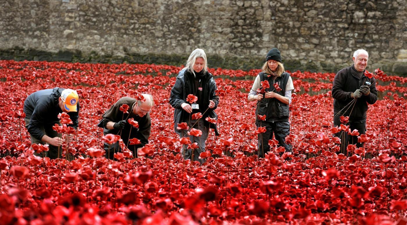 I papaveri rossi lasciano torre di londra saranno venduti - Papaveri e veterani giorno di papaveri e veterani ...